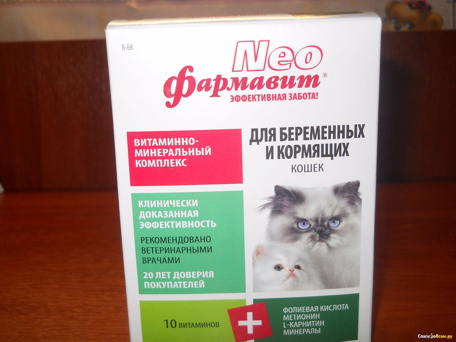 Нео фармавит для беременных и кормящих кошек отзывы 29