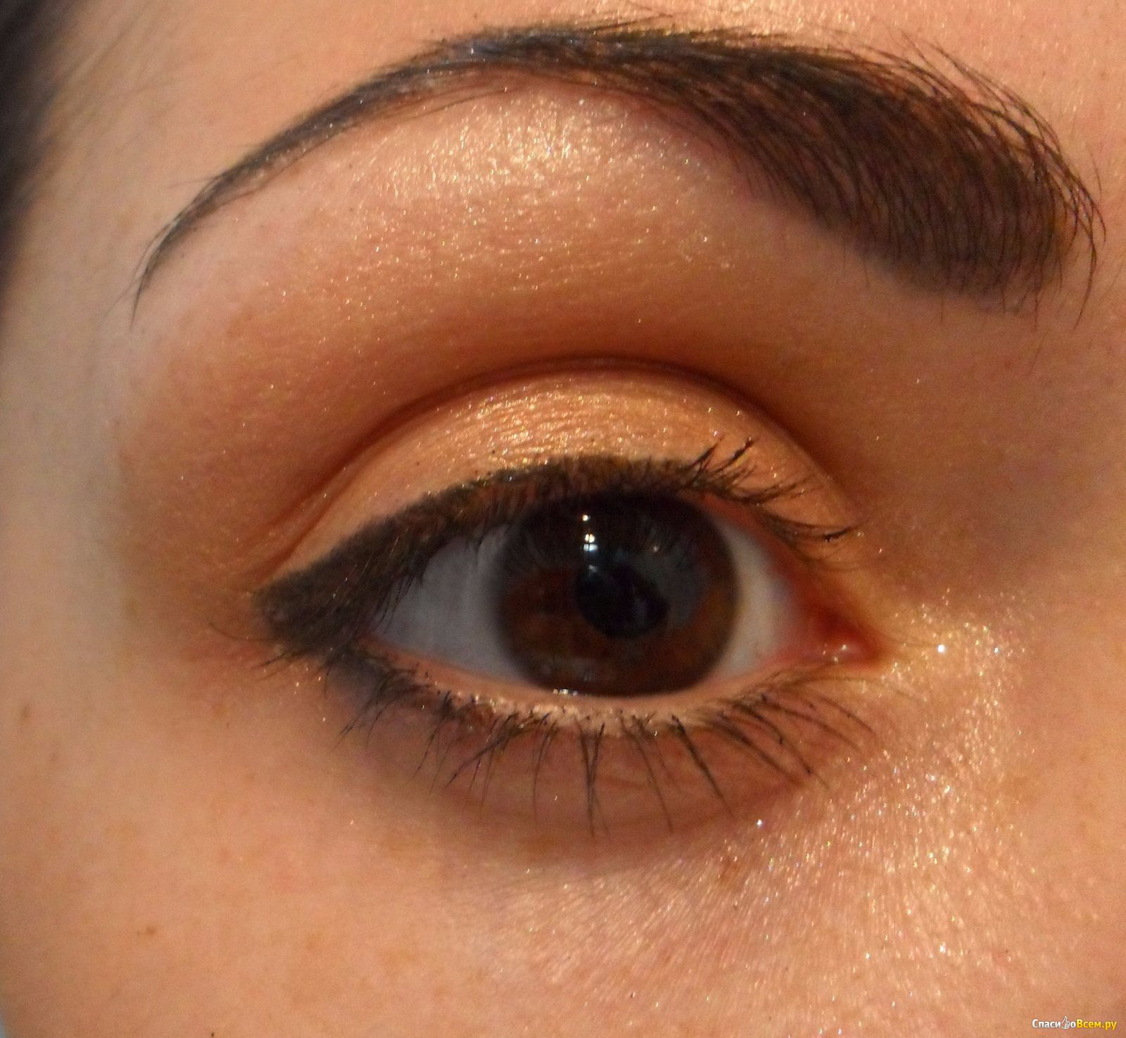 Camomile eye