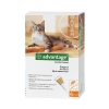 Инсектицид от блох для животных Bayer Advantage для кошек и котят