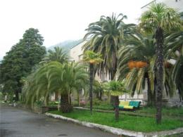 Курортный поселок Гечрипш (Абхазия)