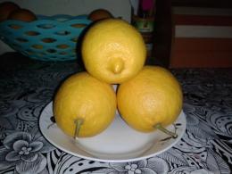 Турецкие Лимоны