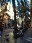 Невероятно уютная улочка с пальмами в центре Валенсии