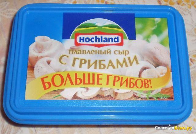 Что можно приготовить из плавленного сыра хохланд