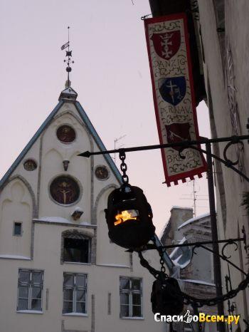 Город Таллинн (Эстония) фото