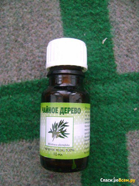 Чайное дерево эфирное масло для беременных 1179