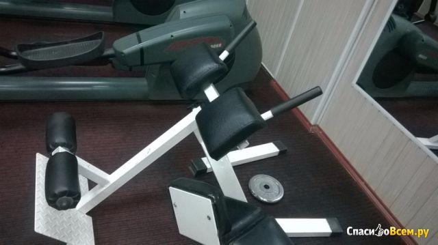 Станок для разгибания спины Gym Vasil В.211 фото