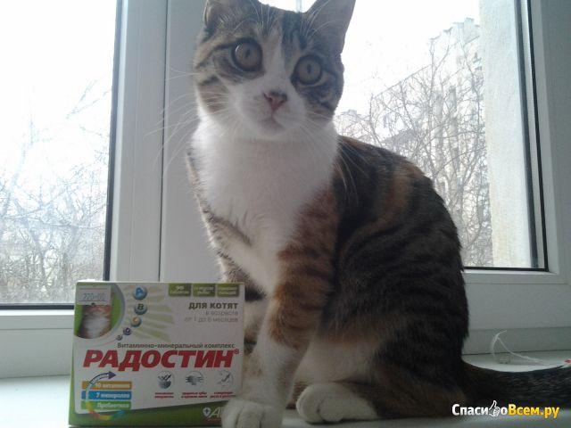 """Витаминно-минеральный комплекс АВЗ """"Радостин"""" для котят фото"""