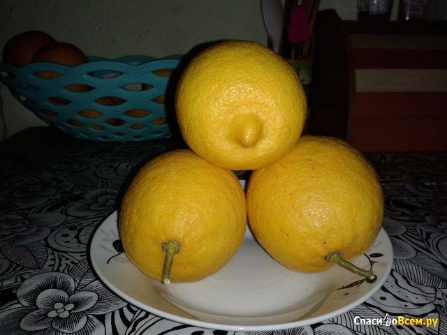 Турецкие Лимоны фото