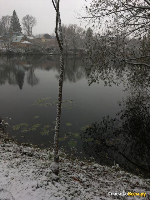 Экскурсия по Ясной Поляне (Россия, Тульская область) фото