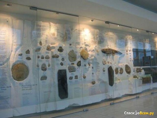 Музей Мирового океана (Калининград, набережная Петра Великого, 1) фото