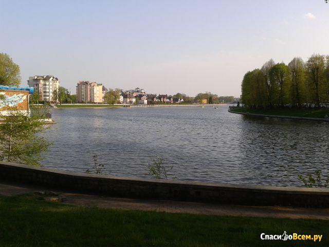 Озеро Верхнее (Россия, Калининград) фото