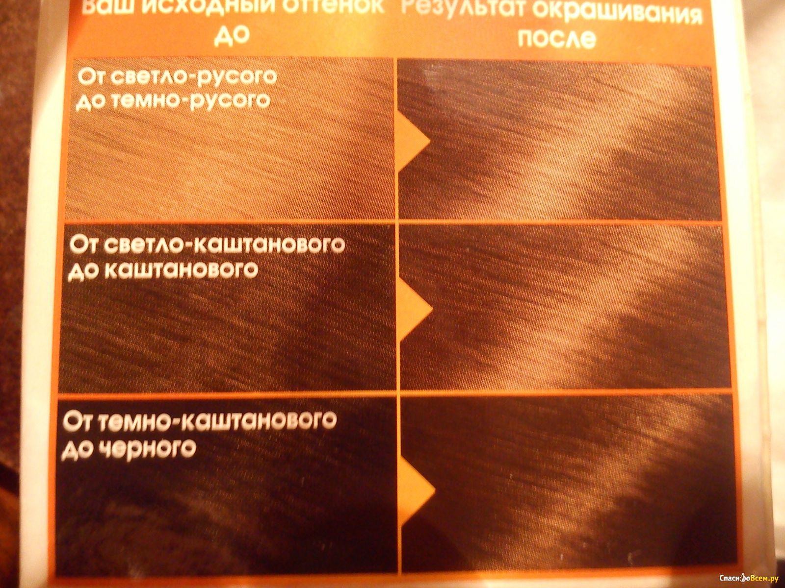 Краска гарньер лесной орех фото