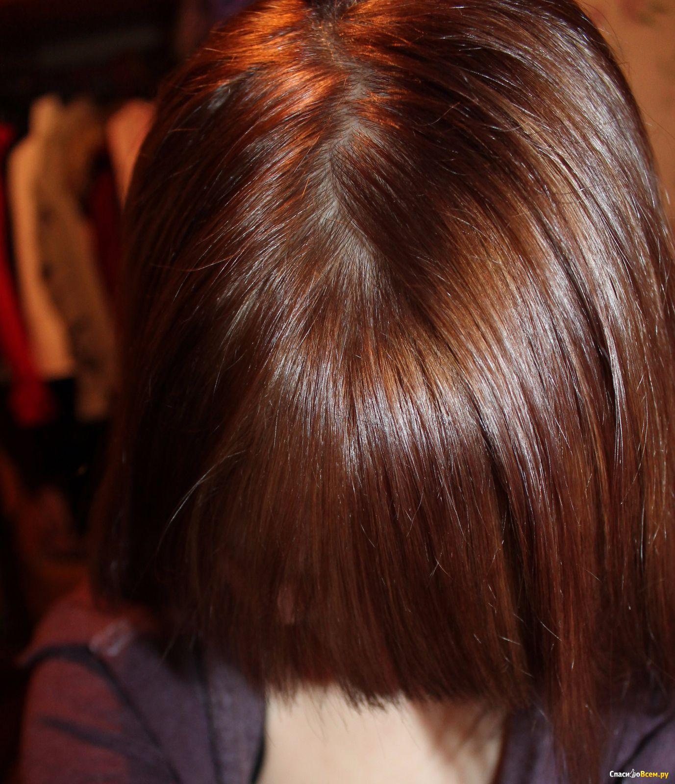 Цвет волос золотистый каштан