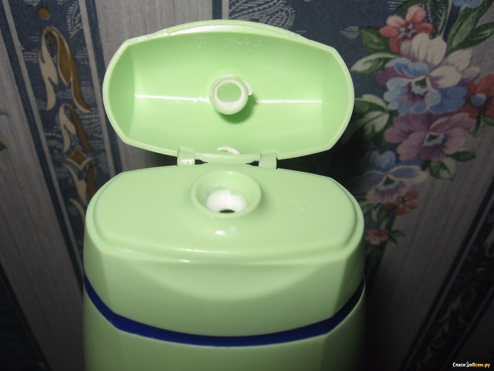 зеленый налет фото