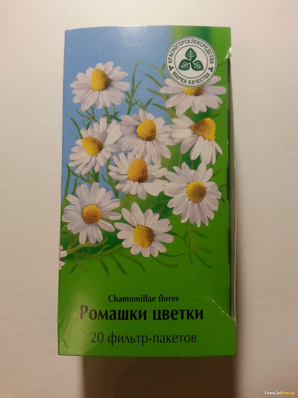 Цветы ромашки описание, состав, применение и полезные