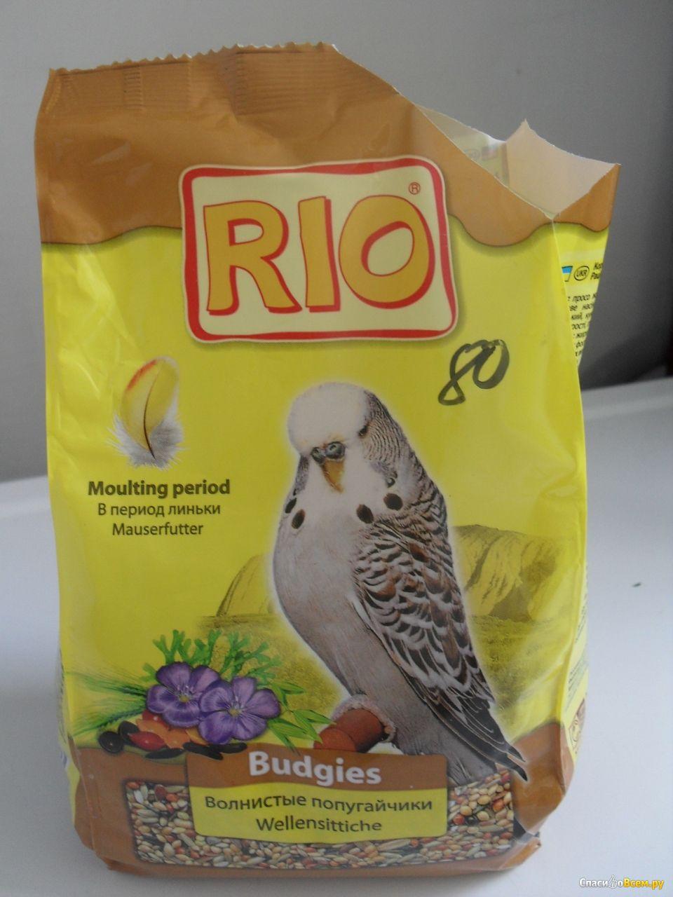 Как сделать корм для попугаев своими руками 28